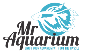 Mr Aquarium logo