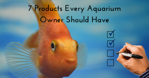 Read more about the article 7 Products Every New Aquarium Owner Should Have